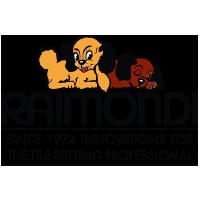 logo_raimondi